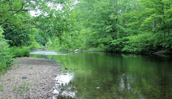 L'état de la ressource en eau devient préoccupant sur l'ensemble du Maine-et-Loire annonce la préfecture