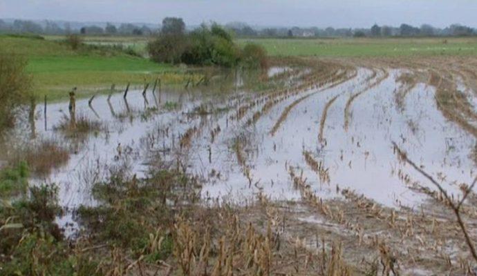 79 communes du Maine-et-Loire reconnues en calamité agricole lors des inondations de juin 2016