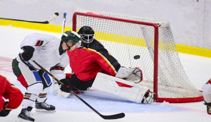 Hockey sur glace : Défaite des Ducs d'Angers à Nice