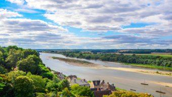 Cyanobactéries : Fin de l'interdiction de consommation du poisson de Loire à compter du 16 septembre