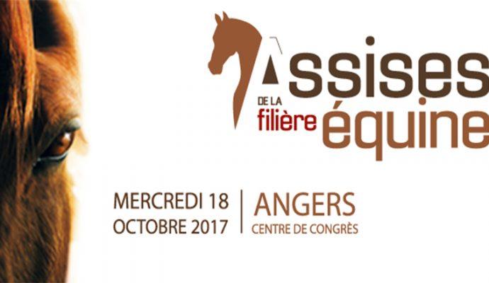 Angers accueille les Assises de la filière équine le 18 octobre