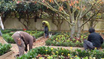 Plus de 500 étudiants du Maine-et-Loire participent aux chantiers école de Terra Botanica à Angers