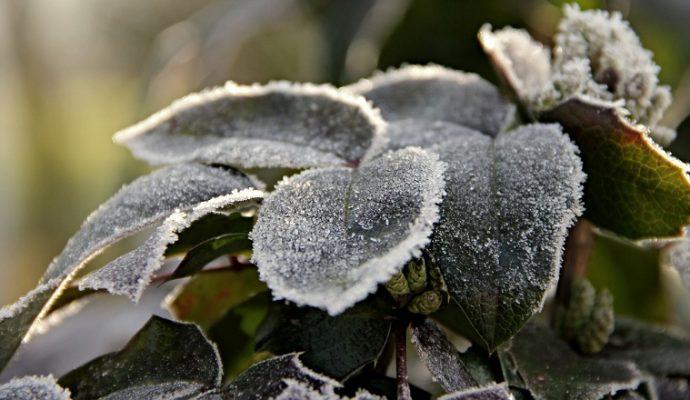 Météo : Des températures glaciales dans les jours à venir