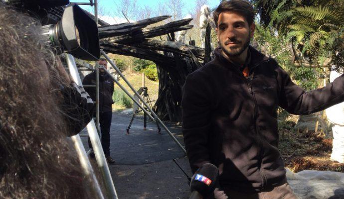 TF1 en reportage à Terra Botanica