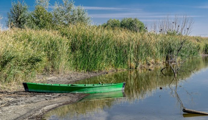 De nombreuses restrictions d'eau dans le Maine-et-Loire en raison de la sécheresse
