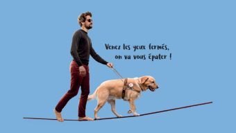 Portes ouvertes à l'Ecole des chiens guides d'Angers ce dimanche