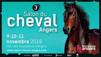 Nouvelle édition du Salon du cheval du 9 au 11 novembre