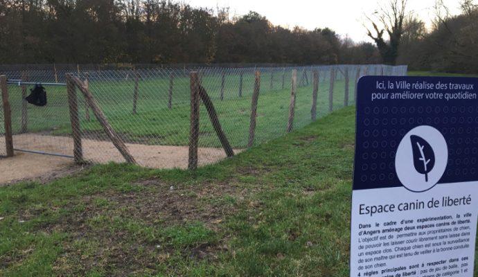 Un espace canin de liberté créé au parc Balzac