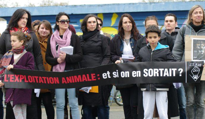 Une manifestation contre la présence d'animaux sauvages dans les cirques