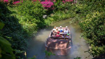 Terra Botanica : une dixième saison avec de nombreuses nouveautés