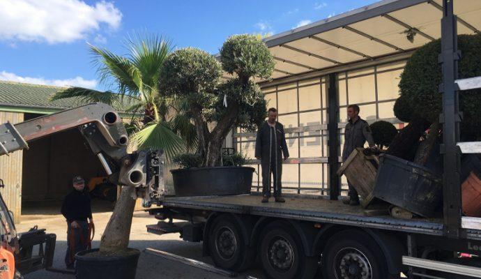 1ère participation de Terra Botanica aux Floralies de Nantes