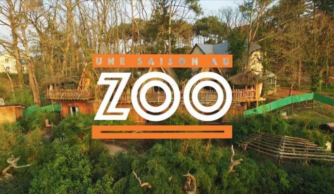 « Une saison au zoo » : le Zoo de La Flèche confirme une 12ème saison