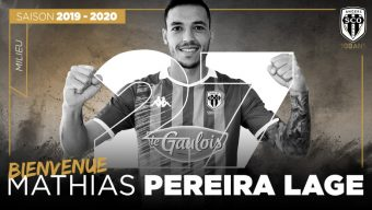 Football : Angers SCO recrute Mathias Pereira Lage