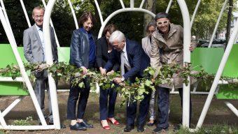 Kiosque Le Fenouil : une oeuvre s'installe au cœur du CHU d'Angers