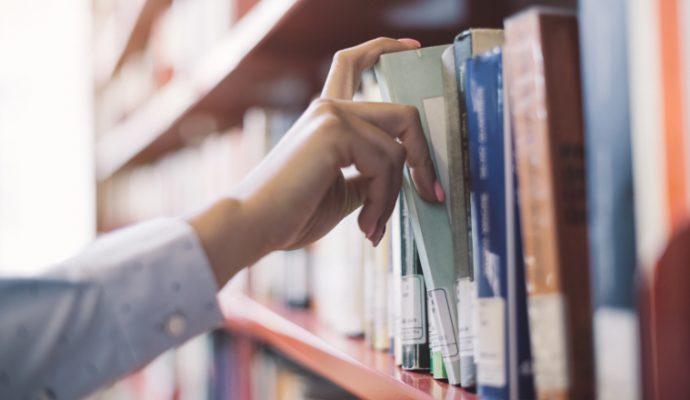 Certaines bibliothèques d'Angers rouvrent leurs portes