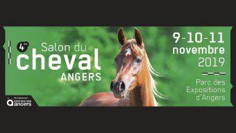 Le Salon du Cheval de retour du 9 au 11 novembre