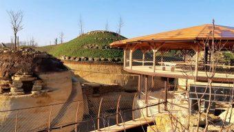Le Bioparc de Doué-la-Fontaine s'organise pour faire face au confinement