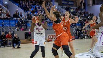 Sports : Angers SCO, l'EAB, l'UFAB et les Dus d'Angers à l'arrêt