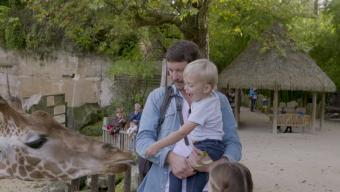 L'Anjou s'affiche sur France Télévision et dans les cinémas parisiens