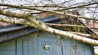 Tempête Dennis : de nombreuses interventions et plus de 6 000 foyers sans électricité dans le Maine-et-Loire