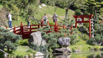 Un reportage sur le Parc oriental dans l'émission Des Racines et des Ailes sur France 3