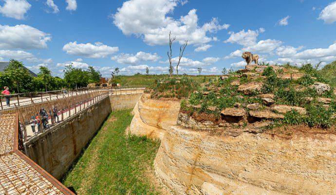 Le cratère des carnivores : grande nouveauté du Bioparc de Doué-la-Fontaine