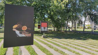 Une exposition photos en plein air au jardin François Mitterrand