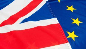 Brexit : les ressortissants britanniques bénéficient d'un service en ligne pour faire leur demande de droit au séjour