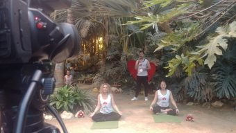 Terra Botanica récolte plus de 7500 euros avec les Yogis du Cœur et 558 kg de courges ont été offerts à la Banque Alimentaire