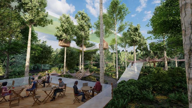 es mystères de la foret - nouveaute 2021 Terra Botanica