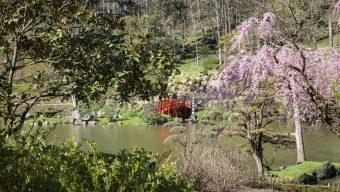 Le Parc oriental de Maulévrier rouvre ce week-end