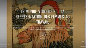 Le musée de la vigne et du vin d'Anjou s'expose en ligne