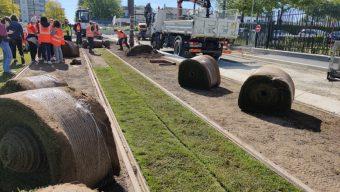 Un nouveau système d'arrosage mis en place sur la nouvelle ligne de tramway à Belle-Beille