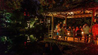 A partir du 1er juillet, le Parc oriental de Maulévrier lance ses promenades de nuit