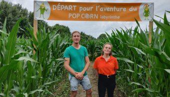 Un labyrinthe géant dans un champ de maïs aux portes d'Angers