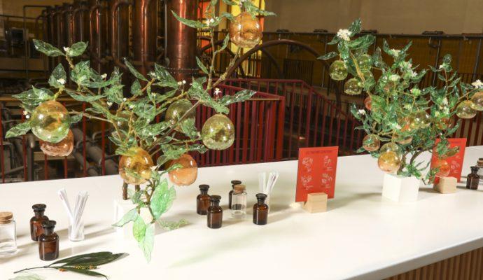 L'artiste William Amor présente des œuvres faites de matières recyclées au carré Cointreau